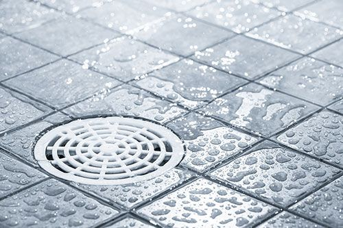 Close up image of a shower drain